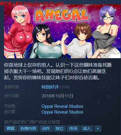 【弹幕ACT/中文】阿黑颜暴击!Ahegal STEAM官中破解版 【200M】 3